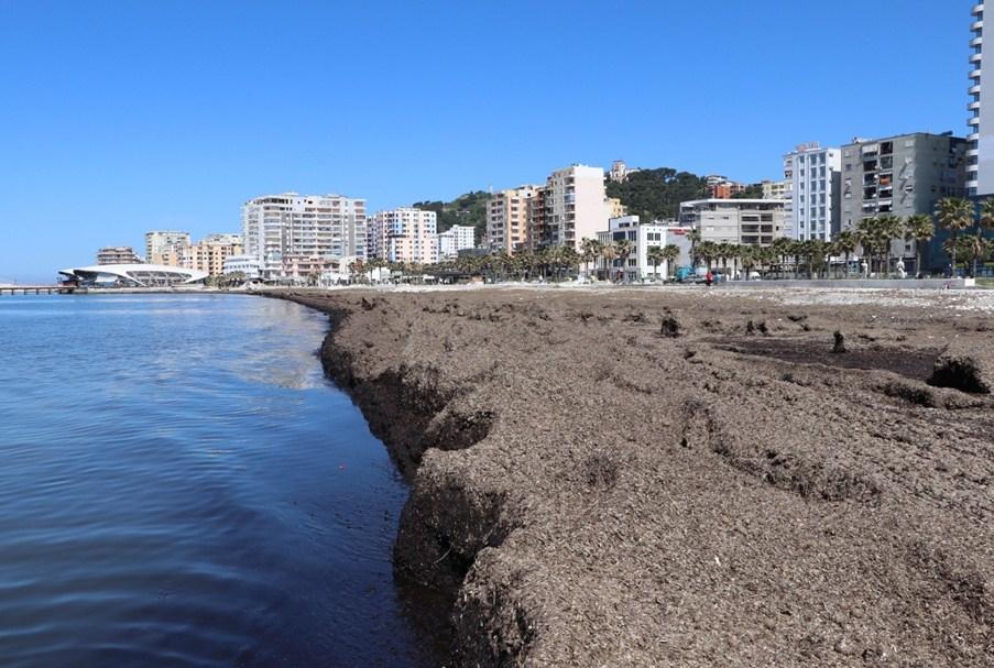 Ujërat e zeza derdhen në det pranë impianteve të kushtueshme