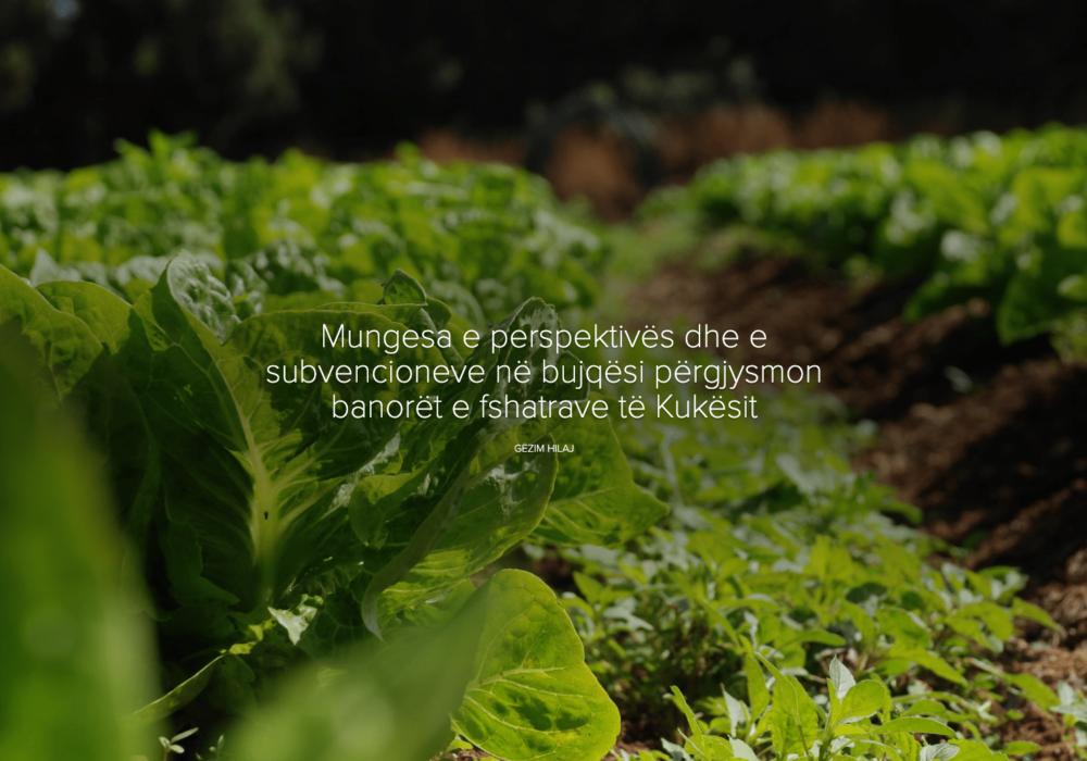 Mungesa e perspektivës dhe e subvencioneve në bujqësi përgjysmon banorët e fshatrave të Kukësit