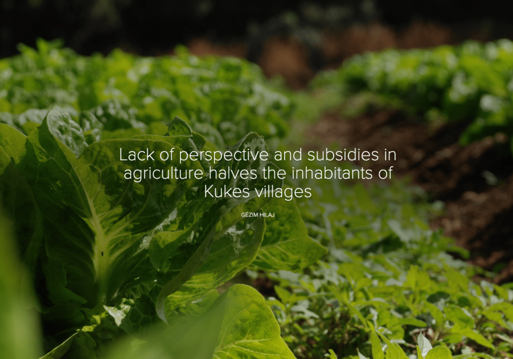 Lack of perspective and subsidies in agriculture halves the inhabitants of Kukes villages